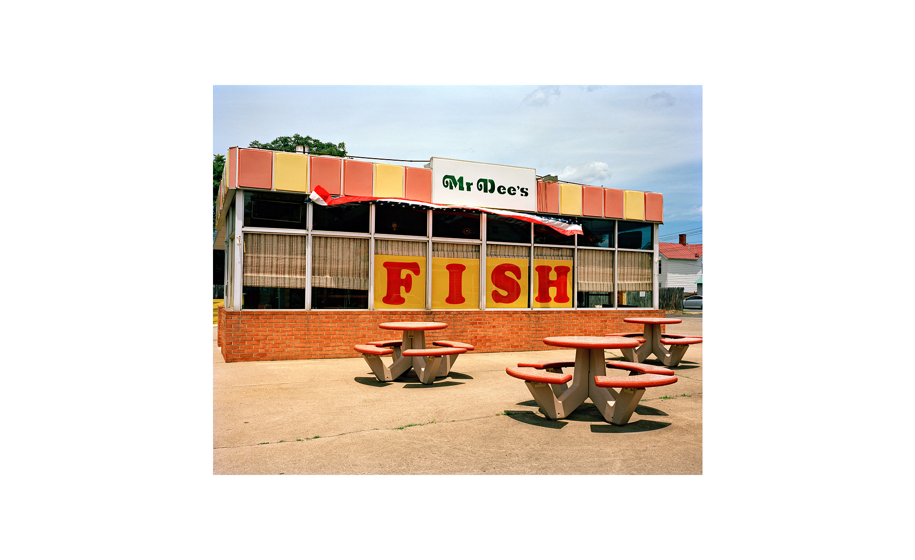 This Was What There Was | Mr. Dees Fish. Fredericksburg, Virginia. July 2007
